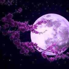 Лунный календарь 2016